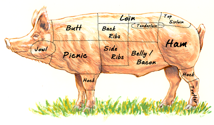 Whole Hog: Part it out, then meat glue it back together!